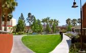CALIFORNIA STATE UNIVERSITY, LOS ANGELES - media